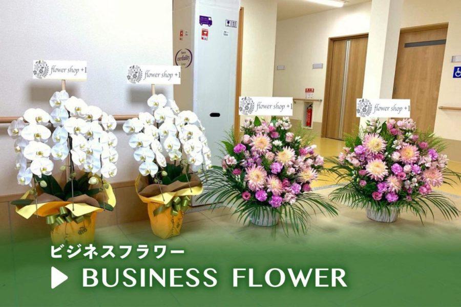 ビジネスフラワー | 神戸三宮の花屋 +1 (プラスワン)